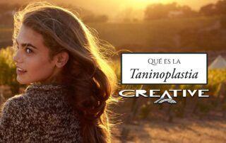 alisado Taninoplastia peluqueria alicante