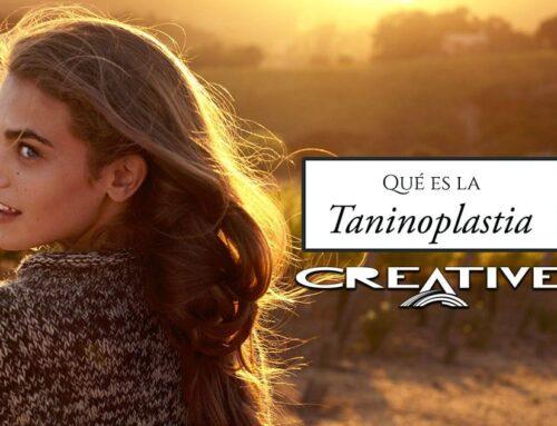 ¿Qué es el tratamiento alisado de taninoplastia-tanino terapy?